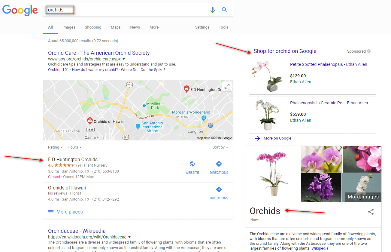 google search results for orchids