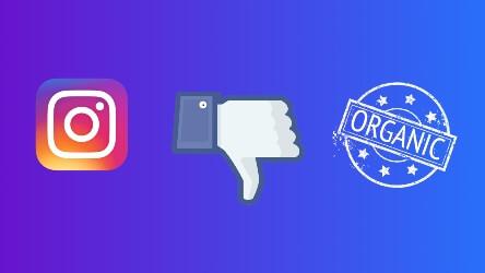Instagram Branded Content Ads Omnidigit